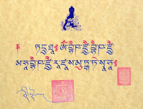 Zwanger van de Medicijn Boeddha